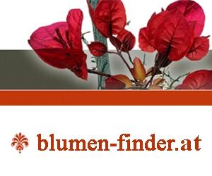 Blumenfinder